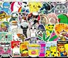 usa saler Lot 100  Vinyl Laptop Skateboard Stickers bomb Luggage Decals dope