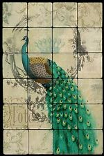 Peacock Still Life Tumbled Marble Tile Wall Mural Backsplash 16x24