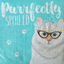 PET PARTY Purrfectly Spoiled SMALL NAPKINS (20) ~ Birthday Supplies Beverage