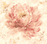 Floral Wallpaper Pink Peach Gold Shimmer Modern Abstract Samples Available