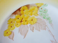 Vintage SHELLEY CAKE dinner serving PLATE PHLOX Autumn hand painted DECO colours
