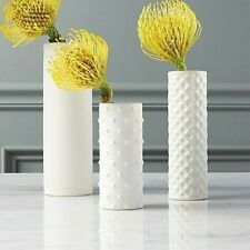 Modern White Vases - Set of 3 - Crate and Barrel Decor - Brand New