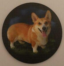 Welsh Corgie Standing - Dog - Coaster - Welsh Slate