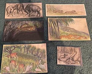 "ANTIQUE LOT 6 ORIGINAL ANIMAL DRAWINGS WPA ERA ART Edward ""ET"" Deutsch 1920/30s"