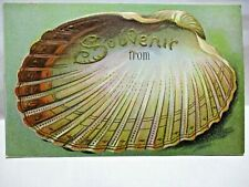 1910 EMBOSSED POSTCARD SEASHELL, SOUVENIR FROM