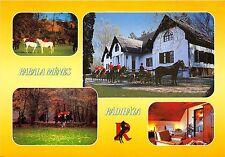 B36787 Animals Animaux Horse Chevaux  hotel kabala radihaza hungary