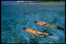 370070 Snorkelers profiter des eaux claires du groupe de l'île de Palau A4 Photo prin