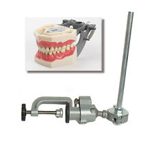 Dental Typodont  FG3 / AG3 and Pole Mount Compatible w/ Frasaco Brand Teeth