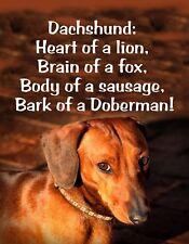 Metal Magnet Dachshund Heart Lion Body Sausage Bark Doberman Humor Dog
