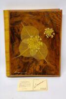 Original Leonard Meiselmann  Fotoalbum mit Holzdeckel