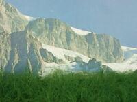 Tappeto erba verde per plastico o diorama alta mm. 25 cm.30x20 - Krea 601