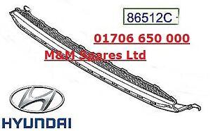 Genuine Hyundai Ioniq 2016 Onward Lower Front Grille - 86560G2100TAD