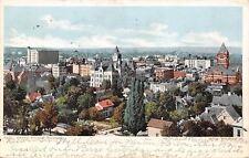 Grand Rapids Michigan~Birds Eye Panorama~Homes~Business~1906 Detroit Pub PC