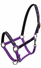 PURPLE Nylon Horse Halter With Barbwire Design Overlay! NEW HORSE TACK!!!