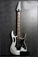 Silver Professional High-Grade Alder Wood 24 Frets Double Wave Electric Guitar #