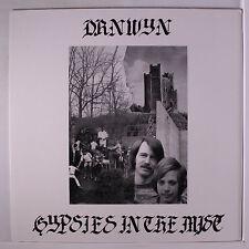 DRNWYN : Gypsies In The Mist LP (South Korea, reissue of Salem Ohio private pre