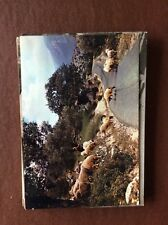 H1e Postcard Unused Undated Cyprus A Cypriot Shepherd Mountain Scene