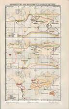 Landkarte map 1906: VERBREITUNG DER WICHTIGSTEN HAUSSÄUGETIERE. Rind Pferd Schw