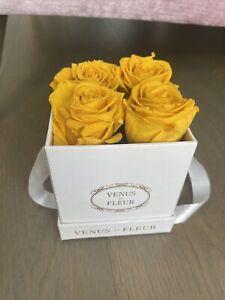 Venus Et Fleur Square Le Petit Champagne 4 Roses Small Box Yellow White Mustard