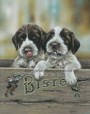 German Wire Hair Pointer Pups Ltd Edt print by P Doyle Won't be beaten on price!