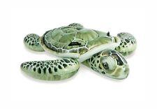 Sea Turtle Ride On Float
