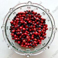 Bulk Red Abrus Precatorius Seeds Gumchi Ornamental Gunchi Rati Jewellery Beads