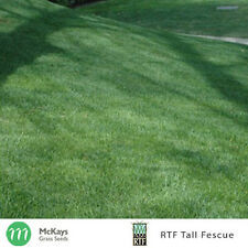 McKays RTF Tall Fescue Grass Seed - 3kg - Lawn Seed Free Postage