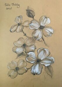 Branch with Dogwood flowers. Pencil and white pastel  original drawing A4 format