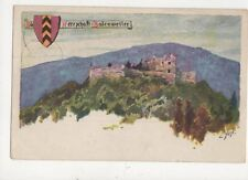 Herrschaft Badenweiler Germany Biest 1900 U/B Postcard 747a