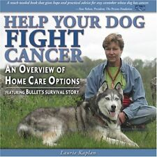 Help Your Dog Fight Cancer: An Overview Of Home Ca