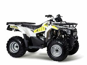 Access Motor Shade 200 Modell 2020 mit Straßenzulassung