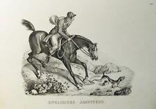 Englisches Jagdpferd Jagd Pferd Hund Horn Jäger hunter horse bugle Fuchs cavallo