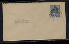 Swaziland  nice  cover  local  use              MS0201
