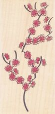 "Asian Blossoms  Stampabilities Rubber Stamp  Free Shipping  2"" x 4""  w/m  NEW"