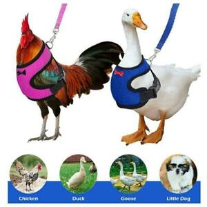 Pet Chicken Accessories Rope Vest Bantam Long-Tail Traction Ropes Chicken L2Z4