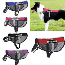 Pet Harness No-Pull Ourdoor Adjustable Reflective Dog Puppy Chest Vest Leash