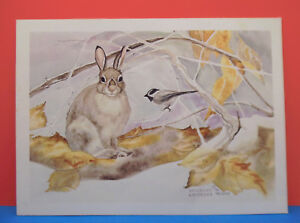 Limited Edition Signed & Numbered Watercolor Print by Navorska 191/400