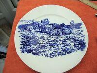 Royal Cauldon Blue/White plate