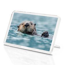 Cute Sea Otter Classic Fridge Magnet -Wildlife Sea Animal Nature Fun Gift #14162
