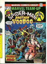 Marvel Team-Up 24 COVER PROOF 1974 Amazing Spider-Man & Brother Voodoo KANE ART