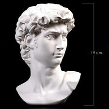 Greek Mythology David Head Bust Statue Europe Michelangelo Sketch Art sculpture