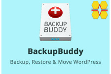 Backup Your Wordpress Website With BackupBuddy for website security