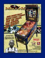 RIPLEYS BELIEVE IT OR NOT ORIGINAL PINBALL MACHINE ADVERTISING FLYER 2004 STERN