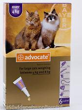 Advocate for Cats over 4kg 6pk (Advantage Multi)