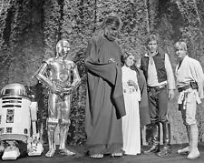 STAR WARS Princess Leia, Han Solo, Chewbacca & Luke Skywalker 8x10 Photo Poster