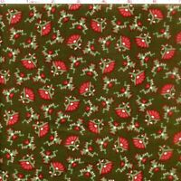 Letters From Home Cotton Quilt Fabric  RJR  Legacy Pattern Brown Bfab