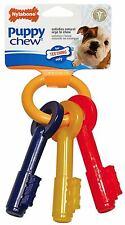 Nylabone Puppy Teething Keys   Dogs