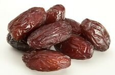 5 Seeds of Organic Non GMO Medjool Dates - Ready to Plant/Free Shipping