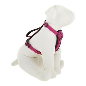 New KONG COMFORT PADDED DOG HARNESS - large - maroon