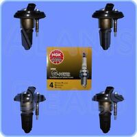 Set of 4 NGK 5019 Spark Plugs + 4 Ignition Coils  For Chevrolet GMC Izusu & More